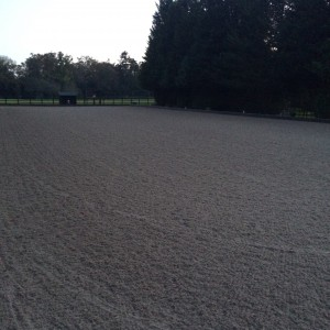 rewax waxed riding arena surface